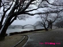 +++ りり☆Blog evolution +++ 広島在住OLの何かやらかしてる日記(・ω・)-20091231_028.jpg