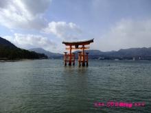 +++ りり☆Blog evolution +++ 広島在住OLの何かやらかしてる日記(・ω・)-20100101_064.jpg