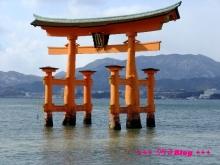 +++ りり☆Blog evolution +++ 広島在住OLの何かやらかしてる日記(・ω・)-20100101_065.jpg