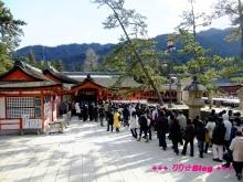 +++ りり☆Blog evolution +++ 広島在住OLの何かやらかしてる日記(・ω・)-20100101_070.jpg