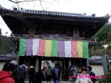 +++ りり☆Blog evolution +++ 広島在住OLの何かやらかしてる日記(・ω・)-20100101_081.jpg