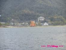 +++ りり☆Blog evolution +++ 広島在住OLの何かやらかしてる日記(・ω・)-20100101_103.jpg