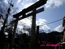 +++ りり☆Blog evolution +++ 広島在住OLの何かやらかしてる日記(・ω・)-20100103_054.jpg