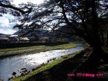 +++ りり☆Blog evolution +++ 広島在住OLの何かやらかしてる日記(・ω・)-20100103_057.jpg