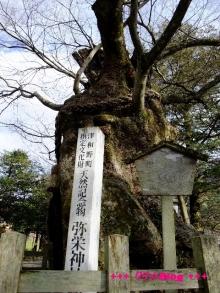 +++ りり☆Blog evolution +++ 広島在住OLの何かやらかしてる日記(・ω・)-20100103_061.jpg