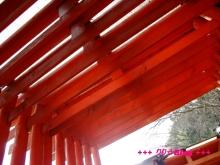 +++ りり☆Blog evolution +++ 広島在住OLの何かやらかしてる日記(・ω・)-20100103_073.jpg
