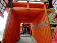 +++ りり☆Blog evolution +++ 広島在住OLの何かやらかしてる日記(・ω・)-20100103_074.jpg
