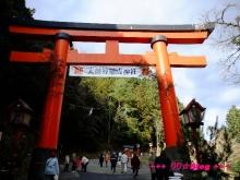 +++ りり☆Blog evolution +++ 広島在住OLの何かやらかしてる日記(・ω・)-20100103_125.jpg