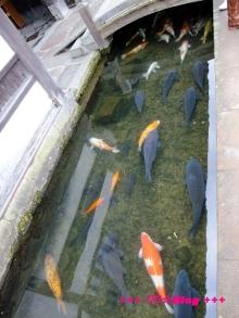 +++ りり☆Blog evolution +++ 広島在住OLの何かやらかしてる日記(・ω・)-20100103_138.jpg