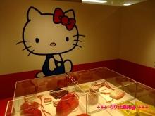 +++ りり☆Blog evolution +++ 広島在住OLの何かやらかしてる日記(・ω・)-20100124_070.jpg