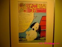 +++ りり☆Blog evolution +++ 広島在住OLの何かやらかしてる日記(・ω・)-20100124_083.jpg
