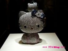 +++ りり☆Blog evolution +++ 広島在住OLの何かやらかしてる日記(・ω・)-20100124_110.jpg