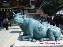 +++ りり☆Blog evolution +++ 広島在住OLの何かやらかしてる日記(・ω・)-20100221_080.jpg