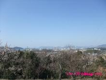 +++ りり☆Blog evolution +++ 広島在住OLの何かやらかしてる日記(・ω・)-20100221_031.jpg