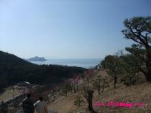 +++ りり☆Blog evolution +++ 広島在住OLの何かやらかしてる日記(・ω・)-20100221_041.jpg