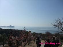 +++ りり☆Blog evolution +++ 広島在住OLの何かやらかしてる日記(・ω・)-20100221_052.jpg
