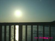 +++ りり☆Blog evolution +++ 広島在住OLの何かやらかしてる日記(・ω・)-20100221_116.jpg