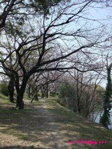 +++ りり☆Blog evolution +++ 広島在住OLの何かやらかしてる日記(ゝω・)o-20100322_024.jpg
