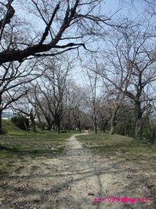 +++ りり☆Blog evolution +++ 広島在住OLの何かやらかしてる日記(ゝω・)o-20100322_025.jpg