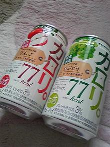 $+++ りり☆Blog evolution +++ 広島在住OLの何かやらかしてる日記(ゝω・)o-DVC00087.jpg