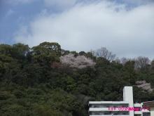 +++ りり☆Blog evolution +++ 広島在住OLの何かやらかしてる日記(ゝω・)o-20100402_009.jpg