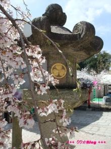 +++ りり☆Blog evolution +++ 広島在住OLの何かやらかしてる日記(ゝω・)o-20100402_029.jpg