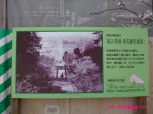 +++ りり☆Blog evolution +++ 広島在住OLの何かやらかしてる日記(ゝω・)o-20100402_037.jpg