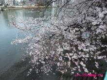 +++ りり☆Blog evolution +++ 広島在住OLの何かやらかしてる日記(ゝω・)o-20100403_012.jpg