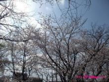 +++ りり☆Blog evolution +++ 広島在住OLの何かやらかしてる日記(ゝω・)o-20100403_020.jpg