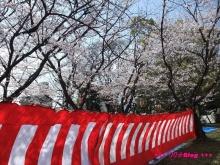 +++ りり☆Blog evolution +++ 広島在住OLの何かやらかしてる日記(ゝω・)o-20100403_021.jpg