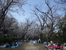 +++ りり☆Blog evolution +++ 広島在住OLの何かやらかしてる日記(ゝω・)o-20100403_023.jpg