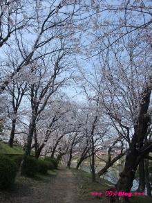 +++ りり☆Blog evolution +++ 広島在住OLの何かやらかしてる日記(ゝω・)o-20100403_026.jpg