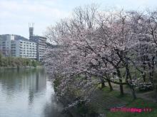 +++ りり☆Blog evolution +++ 広島在住OLの何かやらかしてる日記(ゝω・)o-20100403_036.jpg