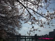 +++ りり☆Blog evolution +++ 広島在住OLの何かやらかしてる日記(ゝω・)o-20100403_054.jpg