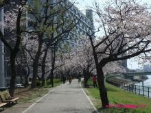 +++ りり☆Blog evolution +++ 広島在住OLの何かやらかしてる日記(ゝω・)o-20100403_064.jpg