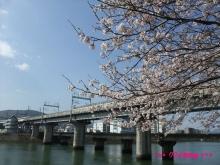 +++ りり☆Blog evolution +++ 広島在住OLの何かやらかしてる日記(ゝω・)o-20100403_065.jpg