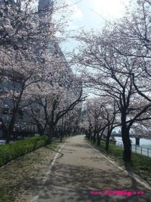 +++ りり☆Blog evolution +++ 広島在住OLの何かやらかしてる日記(ゝω・)o-20100403_066.jpg