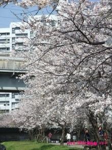 +++ りり☆Blog evolution +++ 広島在住OLの何かやらかしてる日記(ゝω・)o-20100403_071.jpg