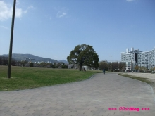 +++ りり☆Blog evolution +++ 広島在住OLの何かやらかしてる日記(ゝω・)o-20100403_099.jpg