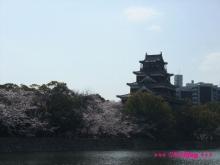 +++ りり☆Blog evolution +++ 広島在住OLの何かやらかしてる日記(ゝω・)o-20100403_137.jpg