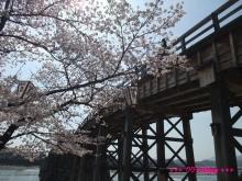 +++ りり☆Blog evolution +++ 広島在住OLの何かやらかしてる日記(ゝω・)o-20100404_055.jpg