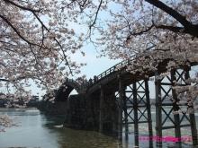 +++ りり☆Blog evolution +++ 広島在住OLの何かやらかしてる日記(ゝω・)o-20100404_056.jpg