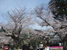 +++ りり☆Blog evolution +++ 広島在住OLの何かやらかしてる日記(ゝω・)o-20100404_070.jpg