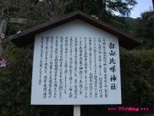 +++ りり☆Blog evolution +++ 広島在住OLの何かやらかしてる日記(ゝω・)o-20100404_159.jpg