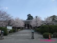 +++ りり☆Blog evolution +++ 広島在住OLの何かやらかしてる日記(ゝω・)o-20100404_183.jpg