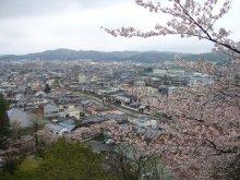 +++ りり☆Blog evolution +++ 広島在住OLの何かやらかしてる日記(ゝω・)o-20100413_057.jpg