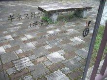 +++ りり☆Blog evolution +++ 広島在住OLの何かやらかしてる日記(ゝω・)o-20100413_105.jpg