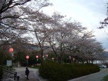 +++ りり☆Blog evolution +++ 広島在住OLの何かやらかしてる日記(ゝω・)o-20100413_243.jpg