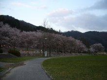 +++ りり☆Blog evolution +++ 広島在住OLの何かやらかしてる日記(ゝω・)o-20100413_250.jpg