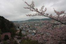 +++ りり☆Blog evolution +++ 広島在住OLの何かやらかしてる日記(ゝω・)o-20100413_002.jpg